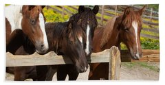Horses Behind A Fence Beach Towel