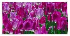 Hot Pink Tulips 3 Beach Sheet by Allen Beatty