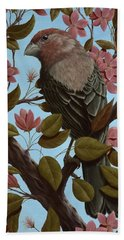 House Finch Beach Towel by Rick Bainbridge