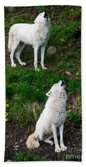 Howling Wolves Beach Towel