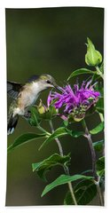 Hummer On Bee Balm Beach Towel