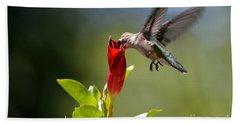 Hummingbird Dipping Beach Sheet by Debbie Green