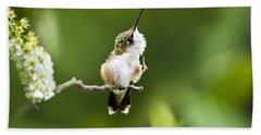 Beach Towel featuring the photograph Hummingbird Flexibility by Christina Rollo