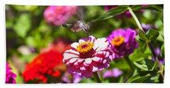 Hummingbird Flight Beach Sheet by Garry Gay