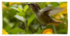 Beach Towel featuring the photograph Hummingbird Looking For Food by Heiko Koehrer-Wagner