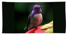 Beach Towel featuring the photograph Hummingbird Male Costa's by Jay Milo