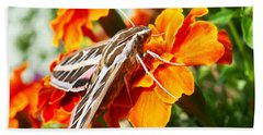 Hummingbird Moth On A Marigold Flower Beach Sheet