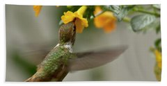 Beach Towel featuring the photograph Hummingbird Sips Nectar by Heiko Koehrer-Wagner