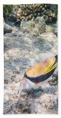 Humuhumunukunukuapua'a Beach Towel
