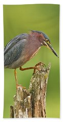 Hunting Green Heron Beach Towel