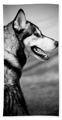 Husky Portrait Beach Sheet