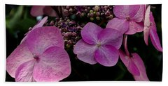 Beach Towel featuring the photograph Hydrangea Flowers  by James C Thomas