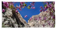 Ice Box Canyon In April Beach Towel