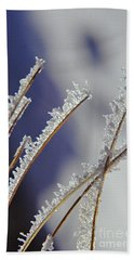 Beach Towel featuring the photograph Ice Crystals On Fireweed Fairbanks  Alaska By Pat Hathaway 1969 by California Views Mr Pat Hathaway Archives