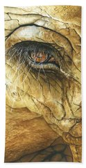 If You Could See What I've Seen... Beach Towel by Barbara Jewell