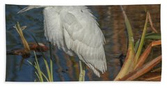 Immature Little Blue Heron Beach Sheet by Jane Luxton