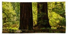Impressions Of Muir Woods California Beach Towel