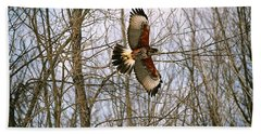 In Flight Beach Towel by David Porteus