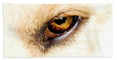 Beach Towel featuring the photograph In The Eyes.... by Rod Wiens