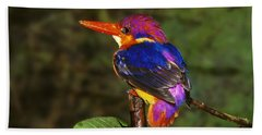 India Three Toed Kingfisher Beach Towel by Anonymous