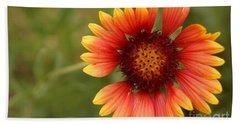 Indian Blanket Flower Beach Sheet