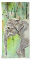 Indian Elephant Beach Sheet