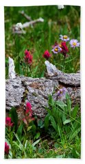 Beach Towel featuring the photograph Indian Paintbrush by Ronda Kimbrow