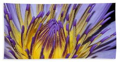 Beach Towel featuring the photograph Inner Sanctum by Judy Whitton