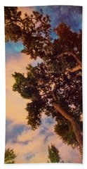 Inspired By Maxfield Parrish Beach Sheet