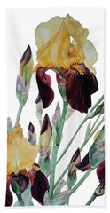 Watercolor Of Tall Bearded Iris In Yellow And Maroon I Call Iris Beethoven Beach Towel