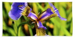 Beach Towel featuring the photograph Iris by Cathy Mahnke