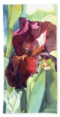 Watercolor Of A Tall Bearded Iris Called Sultan's Palace In Red And Burgundy Beach Towel