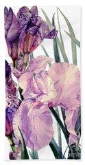 Watercolor Of An Elegant Tall Bearded Iris In Pink And Purple I Call Iris Joan Sutherland Beach Towel