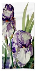 Watercolor Of A Tall Bearded Iris In Violet And White I Call Iris Selena Marie Beach Towel