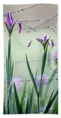Irises2 Beach Towel