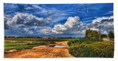 Beach Towel featuring the photograph Israel End Of  Spring Season  by Ron Shoshani