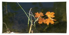 Beach Towel featuring the photograph It's Over - Leafs On Pond by Brenda Brown
