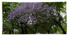 Jacaranda In The Park Beach Sheet
