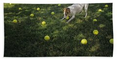 Jack Russell Terrier Tennis Balls Beach Sheet