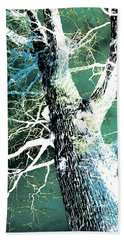 Beach Towel featuring the photograph Jade Forest by Shawna Rowe
