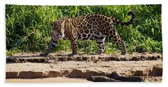 Jaguar River Walk Beach Towel