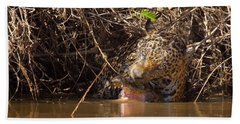 Jaguar Vs Caiman Beach Sheet