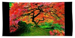 Japanese Red Maple Beach Towel