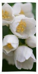 Jasmin Flowers Beach Sheet