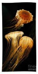 Jellyfish Trio Floating Against A Black Beach Towel