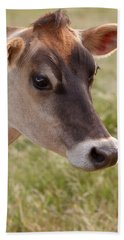 Jersey Cow Portrait Beach Sheet
