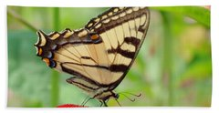 July Swallowtail Beach Towel by MTBobbins Photography