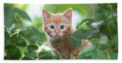 Jungle Kitty Beach Sheet by Debbie Green