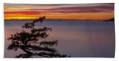 Juniper Point Beach Towel