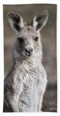 Kangaroo Beach Towel